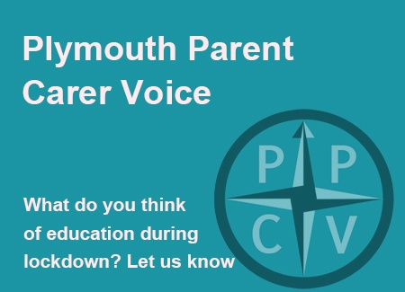 Plymouth Parent Carer Voice