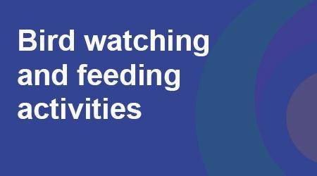 COVID-19 - Bird watching and feeding activities