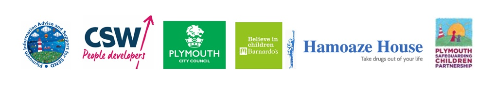 Plymouth Young Carers Support Hub Promotional Banner